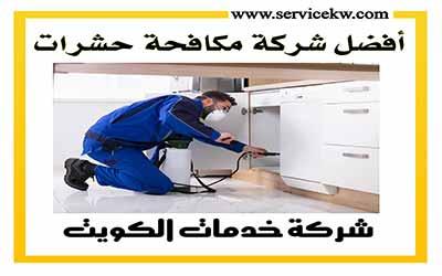 شركة مكافحة الحشرات بالكويت