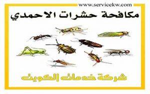 مكافحة حشرات الأحمدي