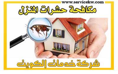 شركة مكافحة حشرات المنزل