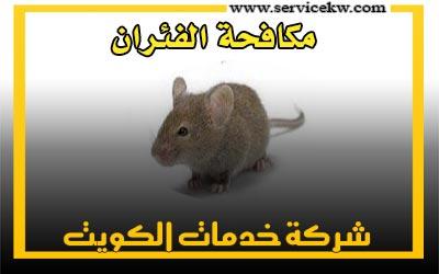 شركة مكافحة الفئران والجرذي بالكويت